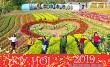 Du xuân ngày tết trên đất Mộc Châu với Happy Land