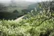 Mộc Châu - Một Trong 3 Điểm Đến Hữu Tình Dịp Đầu Xuân