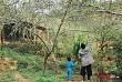 Trẻ Em Hồn Nhiên Vui Đùa Giữa Rừng Mận Trắng Mộc Châu