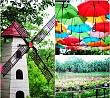 Vườn Hoa Love Garden - Điểm Đến Thú Vị Mới Nổi Ở Mộc Châu