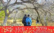 Đón tết dương lịch 2019 trên Mộc Châu mấy ngày là đẹp