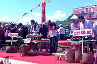 Mộc Châu Tổ Chức Ngày Hội Hái Quả Lần Thứ II Năm 2015