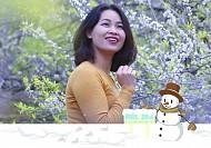 Ngắm mơ ngắm mận trên đất Mộc Châu trong ngày Noel 2018