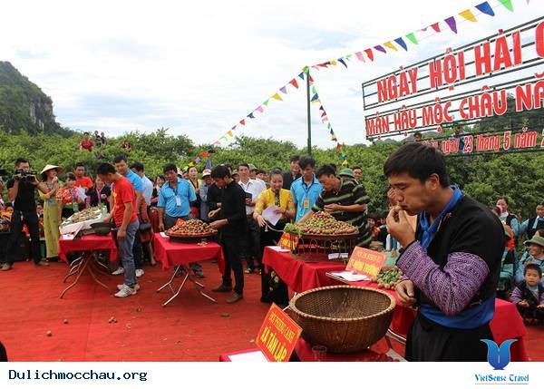 Lễ Hội Hái Mận Mộc Châu - Ảnh 3